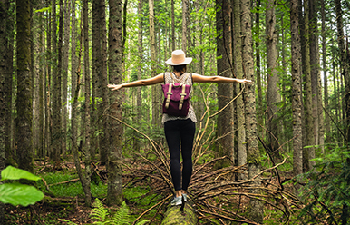 Conferencia La magia del Mindfulness para tu vida