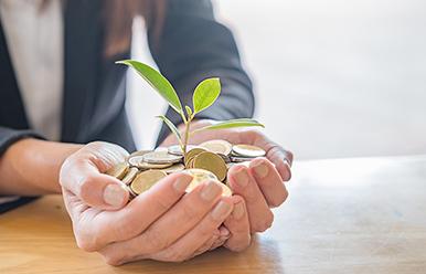 Cada moneda cuenta en el futuro de tu empresa