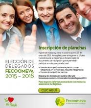 p_FECO_ELECCION4_ENE2015