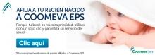 nb2015-EPS-AFIHIJOS-ENE
