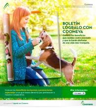 p_MUL_BoletinComercial_FEB2015