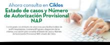 46354-img-principal