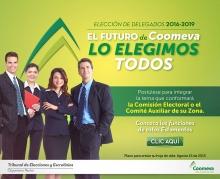 Emailing__convocatoria_comisiones