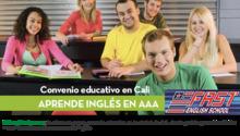 46877-img-principal