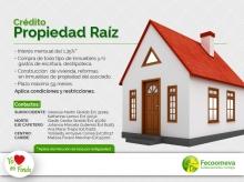 p_FEco_PropiedadRaiz_AGO2015