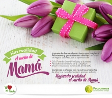 p_FECO_MADRES2_MAY2016