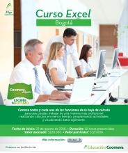 Curso de excel Bogota