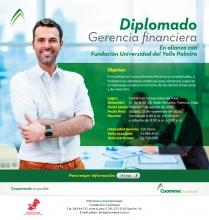Diplomado Gerencia Financiera