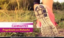 50164 Vive Caminantes