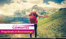 50168 Vive Caminantes