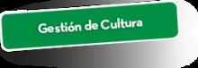50202 Gestión de Cultura