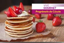 50230 Vive Gourmet