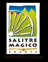 50386 Salitre Magico