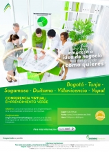 Conferencia Virtual Reg Bogota