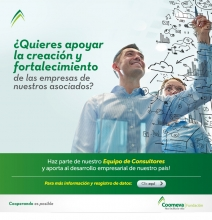 campaña-consultores02