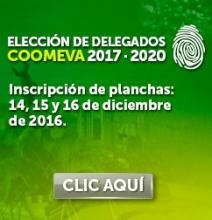 img_EleccionPlanchas_DIC2016