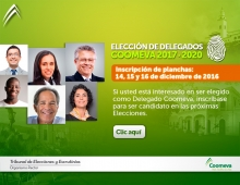 Emailing-Planchas_DIC2016