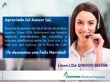 lisa-asesor