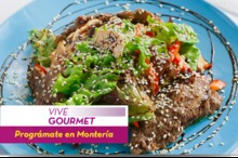 51234 Vive Gourmet