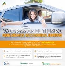 Mailing-Antiguedad-Pinos-1