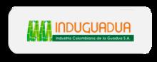 49068 Induguadua 2