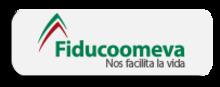 49068 Fiducoomeva