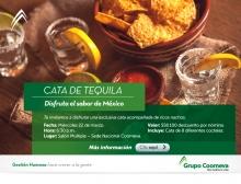 mailing-cata-de-tequila02
