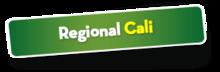 52723 Regional Cali