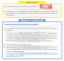 52603  Intranet Terminos y Condiciones FECHA