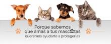 cab_Mascotas