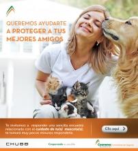 Email_encuesta_mascotas