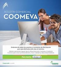 mailing-Boletin-Comercial