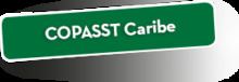51686 Copast Caribe