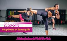 53402 - Vive el Deporte