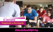 53403 - Vive el Deporte