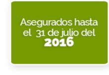 36263 - Cambio