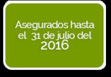 36263 - Verde - FINAL