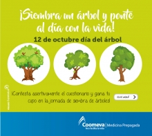p_MP_ARBOL1_OCT2017