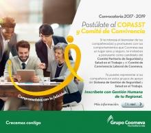 COPASST Y COMITÉ CONVIVENCIA