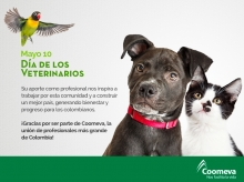 tar_Veterinarios