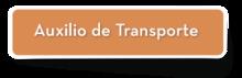 56250 - Auxilio de Transporte