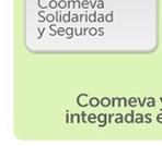 51865 - Coomeva Corredor de Seguros - Corte