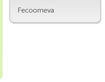 51865 - Feecomeva
