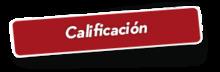 53441 Calificación