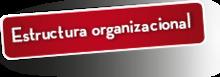 56632 Estructura organizacional