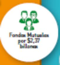 Fondos Mutuales