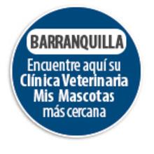 154940 Circulo