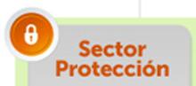 51865 Sector Protección