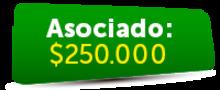 155024 - Asociado