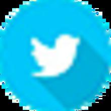 ico_twitter